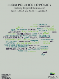 From Politics to Policy: Building Regional Resilience in West Asia and North Africa