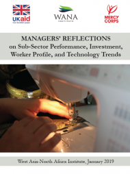 Managers' Reflections on Sub-Sector Performance, Investment, Worker Profile, and Technology Trends