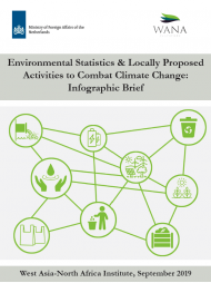 Environmental Statistics & Locally Proposed Activities to Combat Climate Change: Infographic Brief