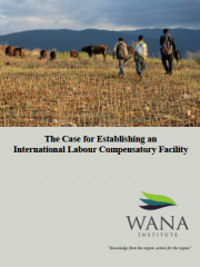 The Case for Establishing an International Labour Compensatory Facility