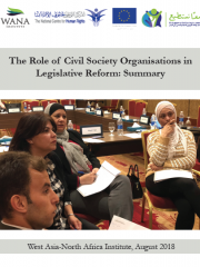 The Role of Civil Society Organisations in Legislative Reform: Summary